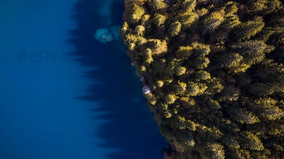 Forest Edge Over Lake. Top Down Drone Aerial Image. Vibrant Autu