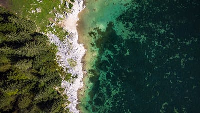 Forest Edge at Lake with Rocky Shore. Aerial Drone Top Down View