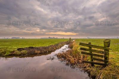 Dutch polder landscape under cloudy sky