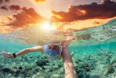 Snorkeling near a tropical island. Young man swims in the water. Sea vacation