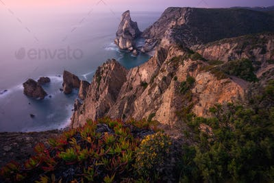 Praia da Ursa Beach. Rocky foreground with some yellow flowers in sunset lit. Surreal scenery