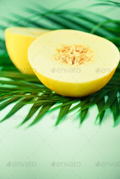 Sweet melon over tropical green palm leaves on turquoise background. Copy space. Pop art design