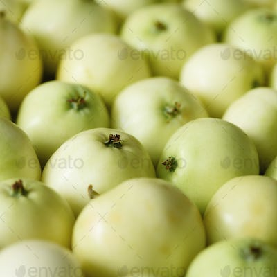 Top view of green apple. Background, concept, copy space, macro. Square