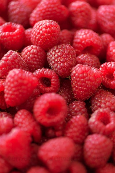 Ripe raspberries macro. Selective focus. Fruit background with copy space. Sunny summer and berries