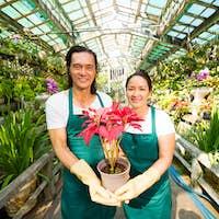 Flower market owners