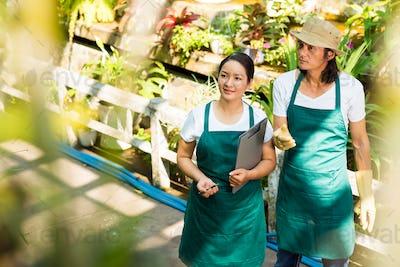 Flower market workers