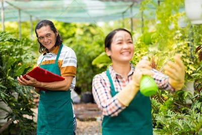 Gardeners in orangery