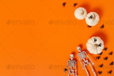 Vibrant Halloween Background with Skeletons, Spiders and Pumpkins