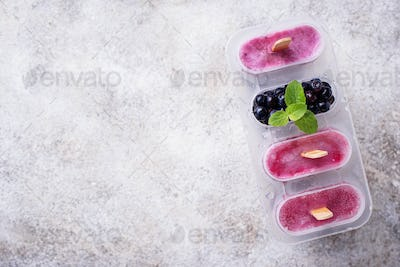 Sweet homemade popsicles with blueberry