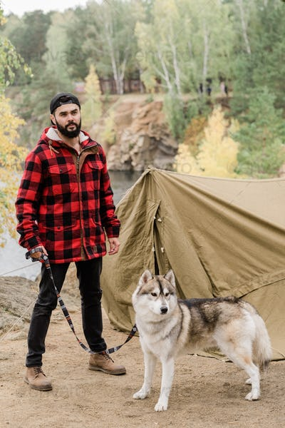 Young hiker in casualwear holding cute husky dog by leash while standing by tent