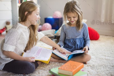 Charming sisters browsing their adventure books