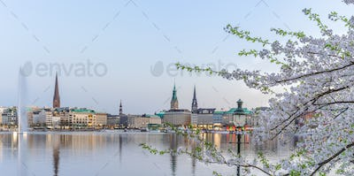 Beautiful view of Hamburg town hall - Rathaus and Alster river at spring earning evening