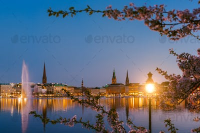 Burn lantern between branches of cherry blossom flowers on calm and beautiful Alster river and