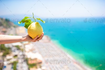 Big yellow lemon in hand in background of mediterranean sea and sky