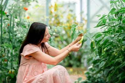 Young woman with basket of greenery and vegetables in the greenhouse. Harvesting time