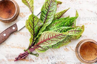 Raw sorrel leaves