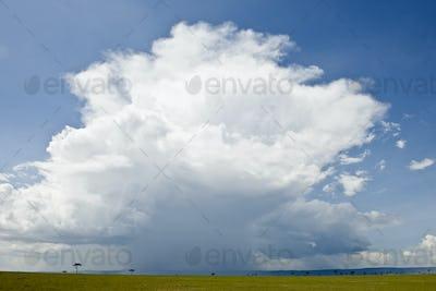 Rain cloud over Africa landscape, Serengeti National Park, Serengeti, Tanzania