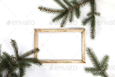 Branches of fir tree and Photo frame