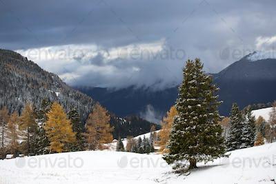Alpe di Siusi in winter, Dolomite, Italy