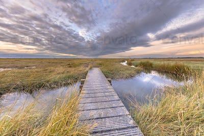 Boardwalk in Tidal Marshland nature reserve Saeftinghe