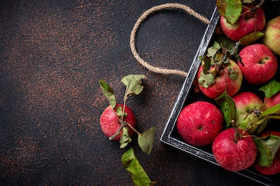 Fresh sweet apple in wooden box
