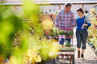 Mature Couple Pushing Trolley With Plants They Have Bought At Garden Center