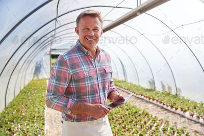 Portrait Of Mature Man Working In Garden Center Greenhouse With Digital Tablet And Checking Plants