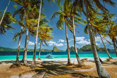 Exploring Palawan most famous touristic spots. Palm trees and lonely island hopping tour boat on