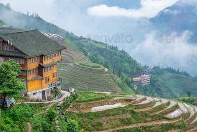 Yaoshan Mountain, Guilin, China  rice terraces