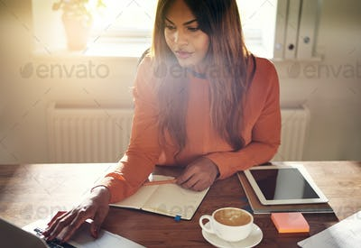 Young entrepreneur working at a desk in her home office