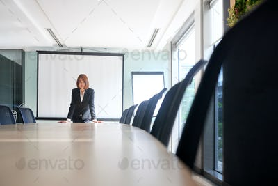 Business lady in meeting room
