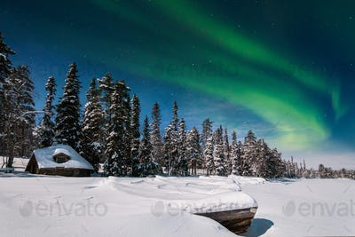 Winter forest at at night under the northern lights. Finland