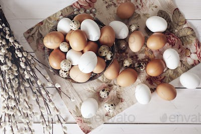 Different kinds of eggs on a wooden table