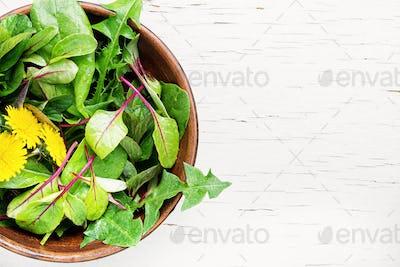 Spring dandelion salad