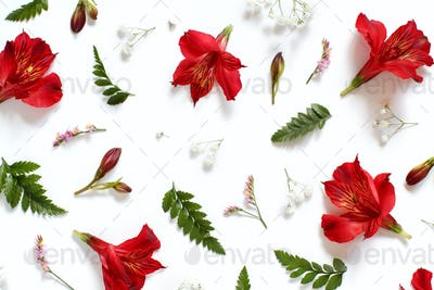 Flowers on a l white background