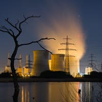 Power Station And Dead Trees