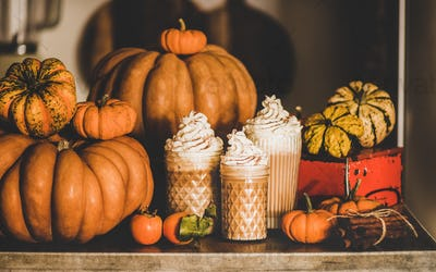 Pumpkin latte coffee in glasses among pumpkins and cinnamon sticks