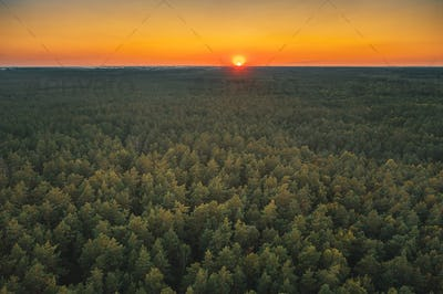 Aerial View Of Sunset Sky Above Green Forest Landscape In Evenin