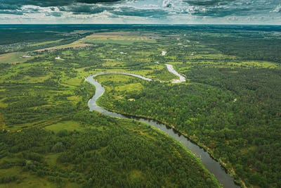 Aerial View Green Forest Woods And River Landscape In Summer Eve
