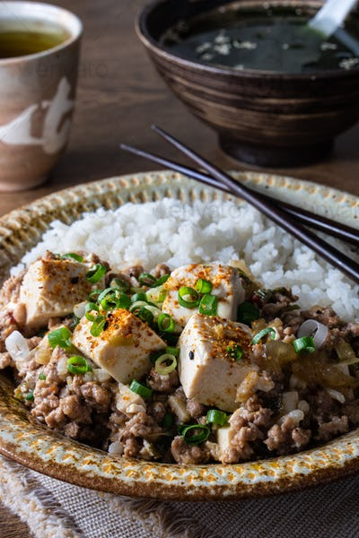 Mapo Doufu Chinese Dish