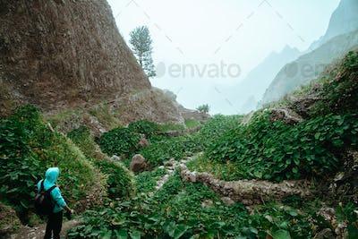 Male hiker walking through a wondrous misty landscape. Huge rocks surround a fertile ravine full of