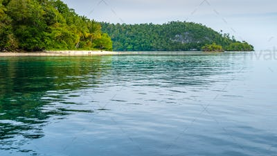 Friwen Island in Front and Wall in Background, West Papuan, Raja Ampat, Indonesia