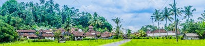Town houses near rice tarrace field under palm trees in Sidemen district. Bali, Indonesia