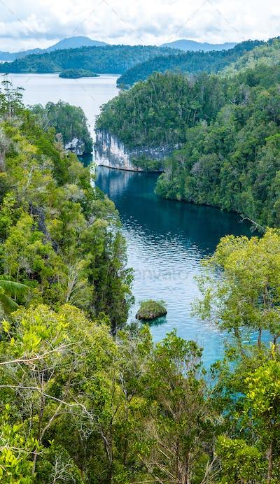 Passage between Jungle Rocks, Mangrove near Warikaf Homestay, Kabui Bay. Gam Island, West Papuan