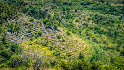 Spectacular Terrace near Abangan Hill on the Way to Suwehan Beach, Nusa Penida Island, Bali