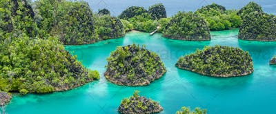 Painemo Island on sunny day. Blue Lagoon, Raja Ampat, West Papua, Indonesia
