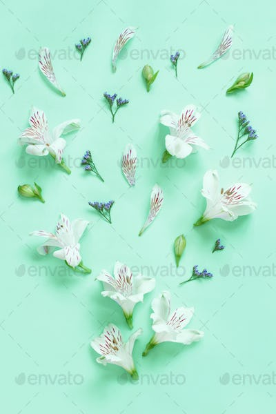 Flowers on a light green background