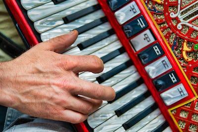 Detail of a popular folk accordion