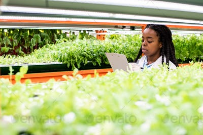 Young African researcher making notes among shelves with green seedlings