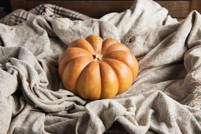 Autumn flat lay with pumpkins